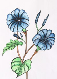 Florals in Water Colour Shading-1